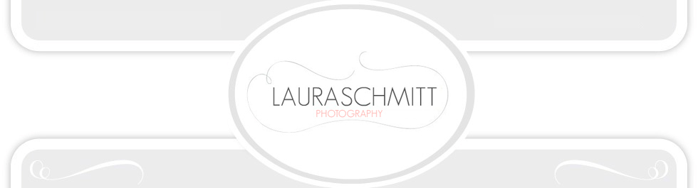 Laura Schmitt Photography logo