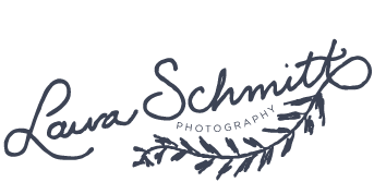 Laura Schmitt Photography – Wisconsin and Midwest Wedding Photography logo